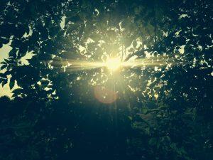RobGaller_7DAYS_OFFLINE134